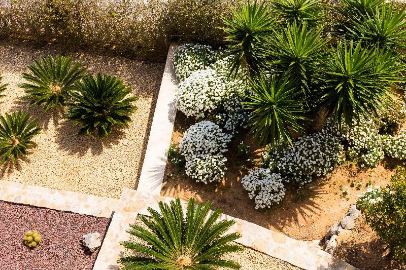 Sublimez votre extérieur grâce à un beau jardin contemporain à Vichy   Xavier Paysage