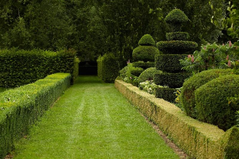 Profitez d'un beau jardin à la française avec votre professionnel à Vichy | Xavier Paysage