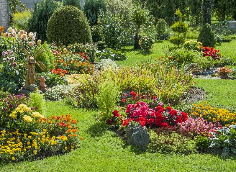 À Vichy, un professionnel pour définir le type de jardin à créer   Xavier Paysage