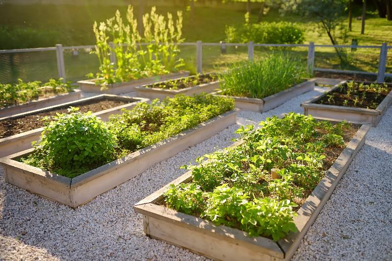 jardin de ville à Vichy   Xavier Paysage