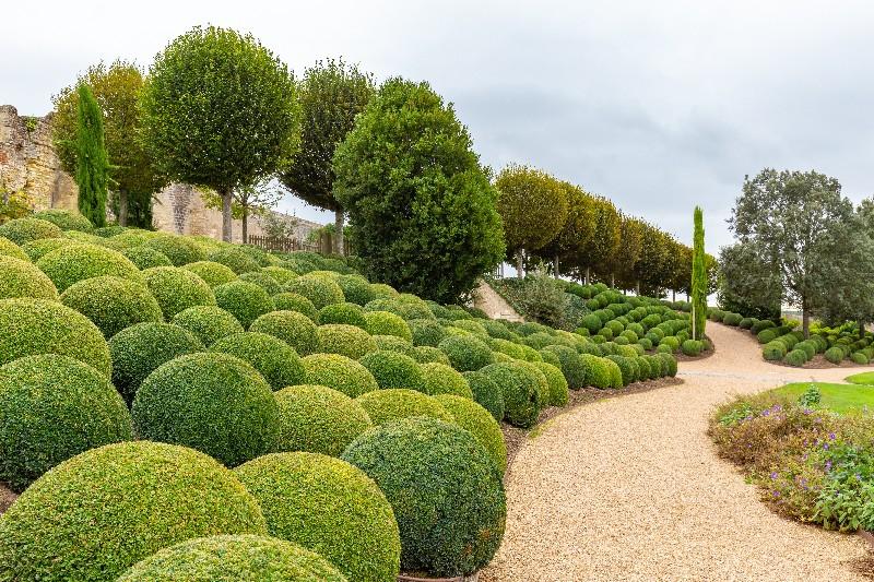 jardin à la française à Vichy | Xavier Paysage