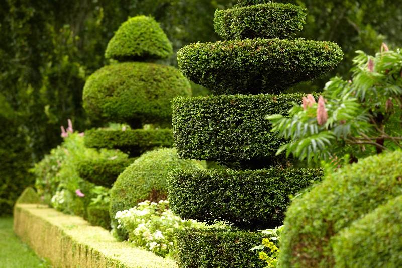 types de jardins à Vichy   Xavier Paysage