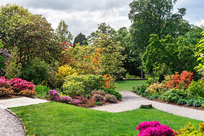 jardin à l'anglaise à Vichy   Xavier Paysage